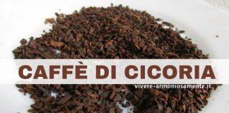 caffè-di-cicoria-proprietà
