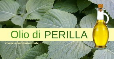 Olio di Perilla Contro Colesterolo, Rughe e Allergie