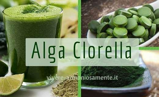 alga-clorella-proprietà