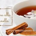 tisana-alla-cannella