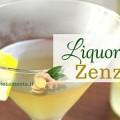 liquore-allo-zenzero-ricetta