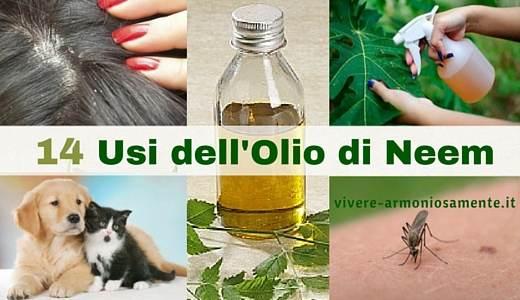 usi-dell-olio-di-neem