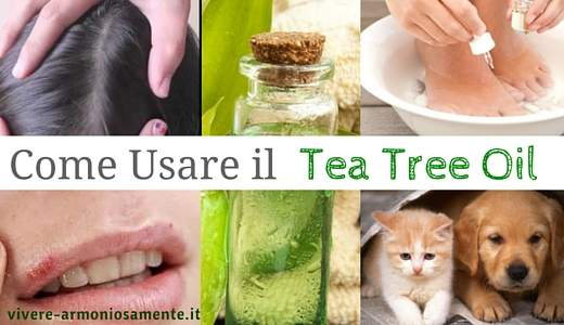 come-usare-il tea-tree-oil