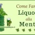 liquore-alla-menta-fatto-in-casa