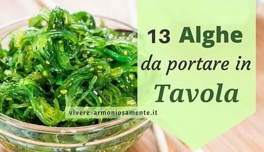 Alghe marine 13 alghe commestibili propriet e come usarle in cucina - Alghe in cucina ...