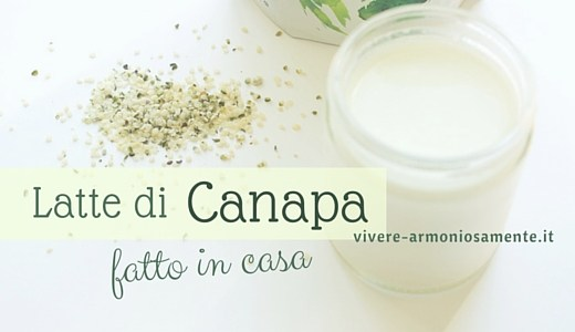 latte-di-canapa-fatto-in-casa