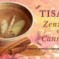 tisana-zenzero-e-cannella