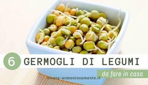 germogli-di-legumi-ricette