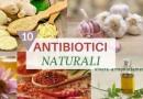 10 Antibiotici Naturali Efficaci per Infezioni, Funghi e Batteri