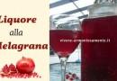 Liquore alla Melagrana: Ricetta per Farlo in Casa
