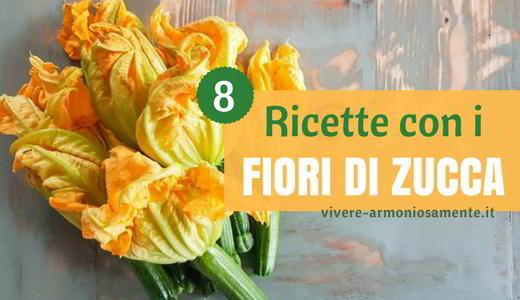 ricette-con-fiori-di-zucca