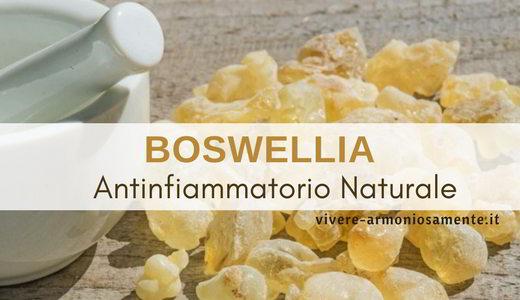boswellia-proprieta