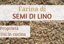 Farina di Semi di Lino: Proprietà, Usi in Cucina e Ricette