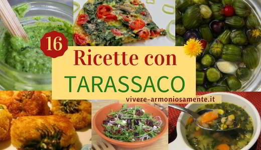 ricette-con-tarassaco