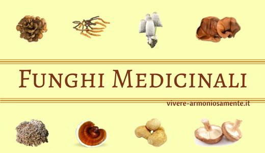 funghi-medicinali-micoterapia
