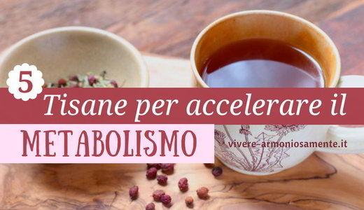 tisane-per-accelerare-il-metabolismo