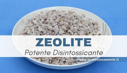 zeolite- proprieta-controindicazioni