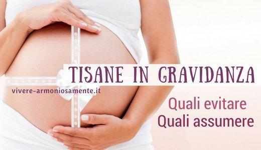 tisane-in-gravidanza