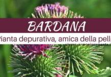 bardana-pianta