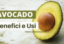 avocado proprietà usi