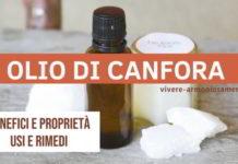 olio di canfora
