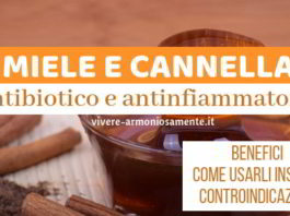 miele e cannella benefici
